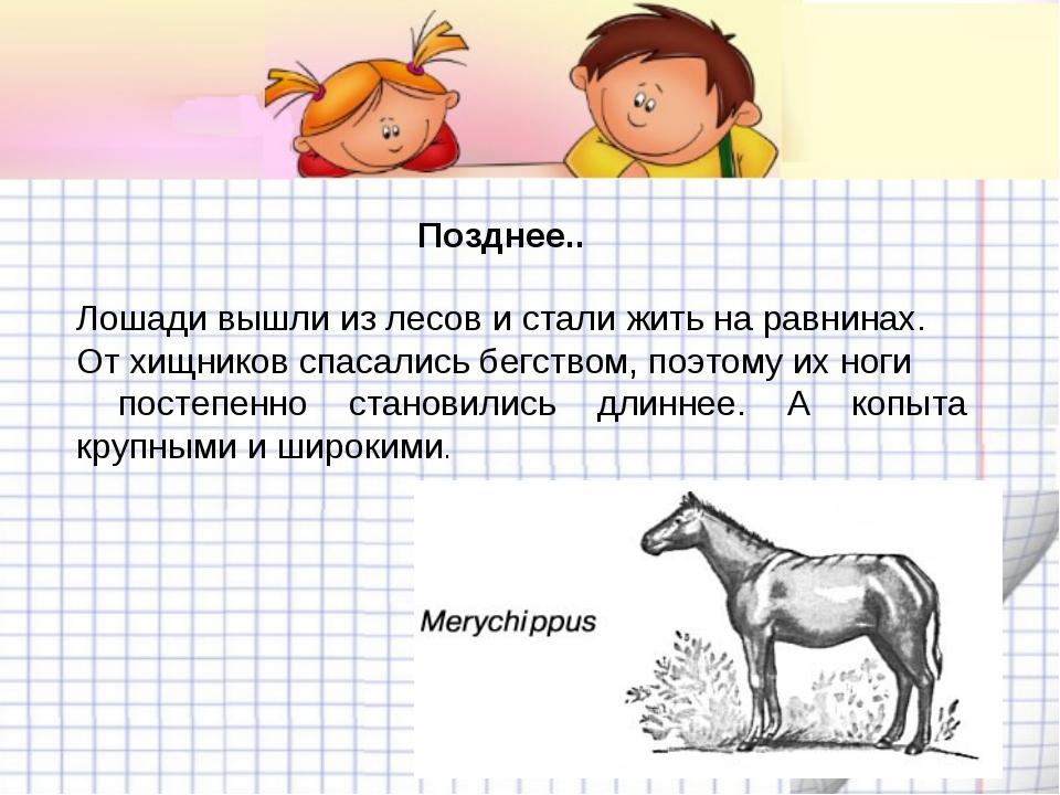 Доклад мое любимое животное лошадь 6547