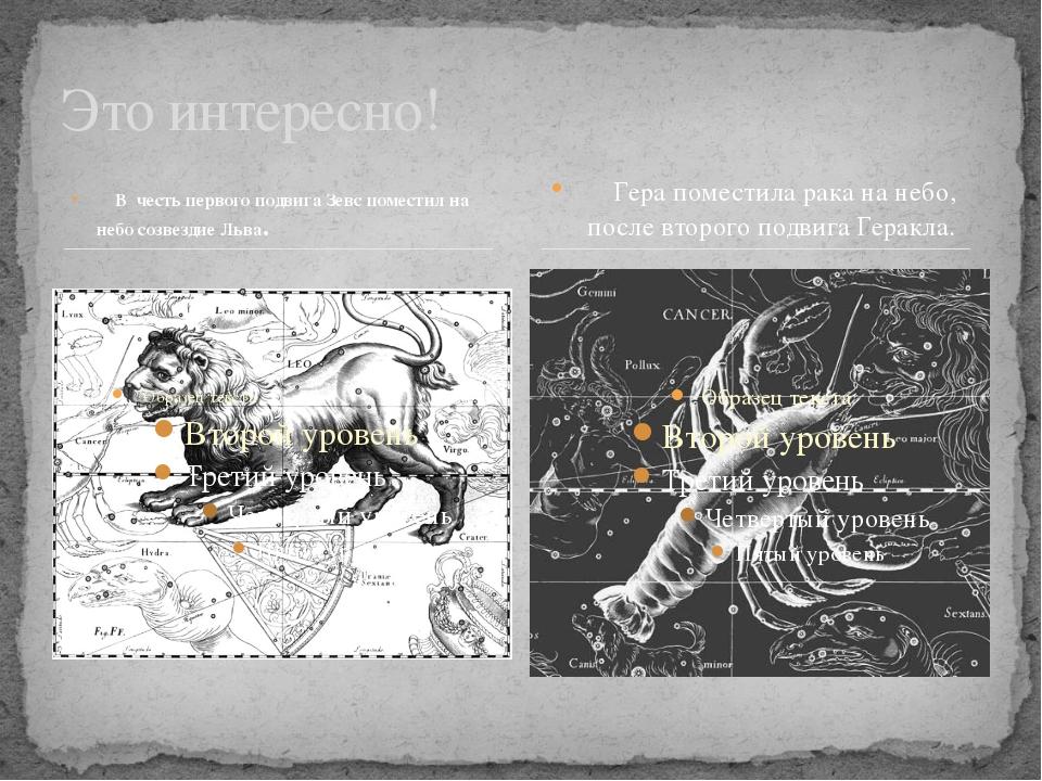 В честь первого подвига Зевс поместил на небо созвездие Льва. Это интересно!...