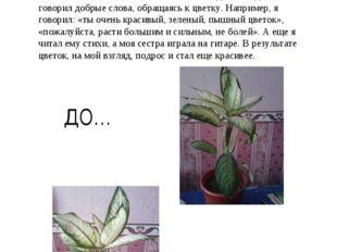 Меня очень заинтересовал эксперимент ученых с семенами растений, поэтому я ре