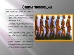 Этапы эволюции Несмотря на версии происхождения человека, все ученые сходятся
