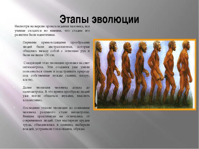 Этапы эволюции Несмотря на версии происхождения человека, все ученые сходятся...