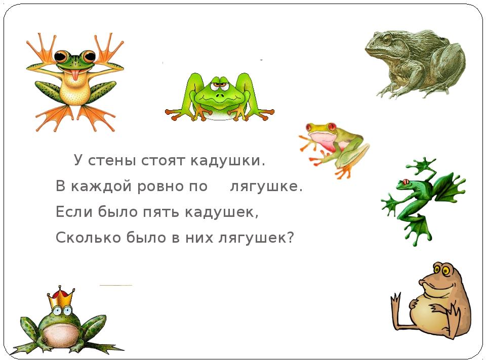 У стены стоят кадушки. В каждой ровно по лягушке. Если было пять кадуше...