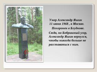 Сюда, на Бобришный угор, Александр Яшин вернулся, чтобы никогда больше не рас