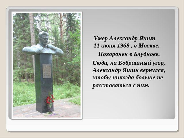 Сюда, на Бобришный угор, Александр Яшин вернулся, чтобы никогда больше не рас...