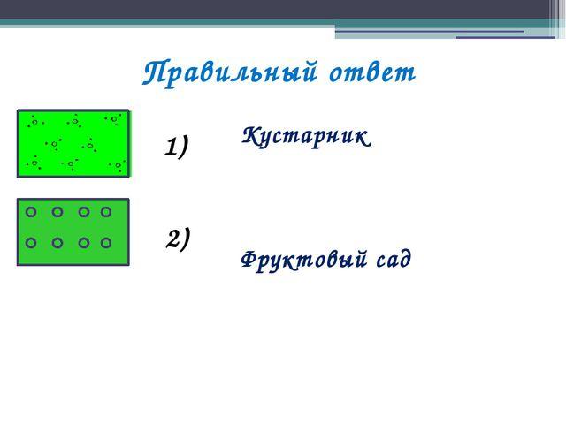 Правильный ответ Кустарник Фруктовый сад 1) 2)