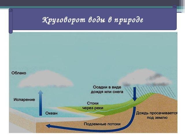 Какой природный процесс показан на рисунке? Круговорот воды в природе