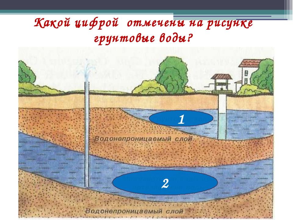 Какой цифрой отмечены на рисунке грунтовые воды? 1 2
