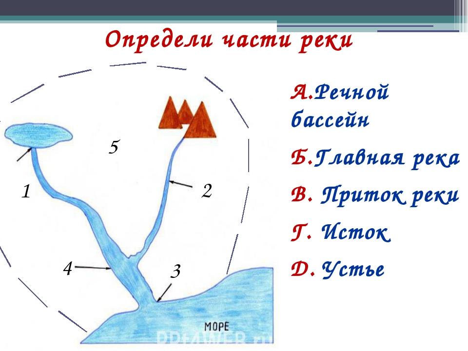 Определи части реки А.Речной бассейн Б.Главная река В. Приток реки Г. Исток Д...