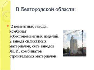 В Белгородской области: 2 цементных завода, комбинат асбестоцементных изделий