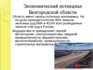 Экономический потенциал Белгородской области Область имеет запасы полезных ис