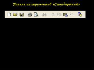 Панель инструментов «Стандартная» Дополнительный инструмент окна приложения -