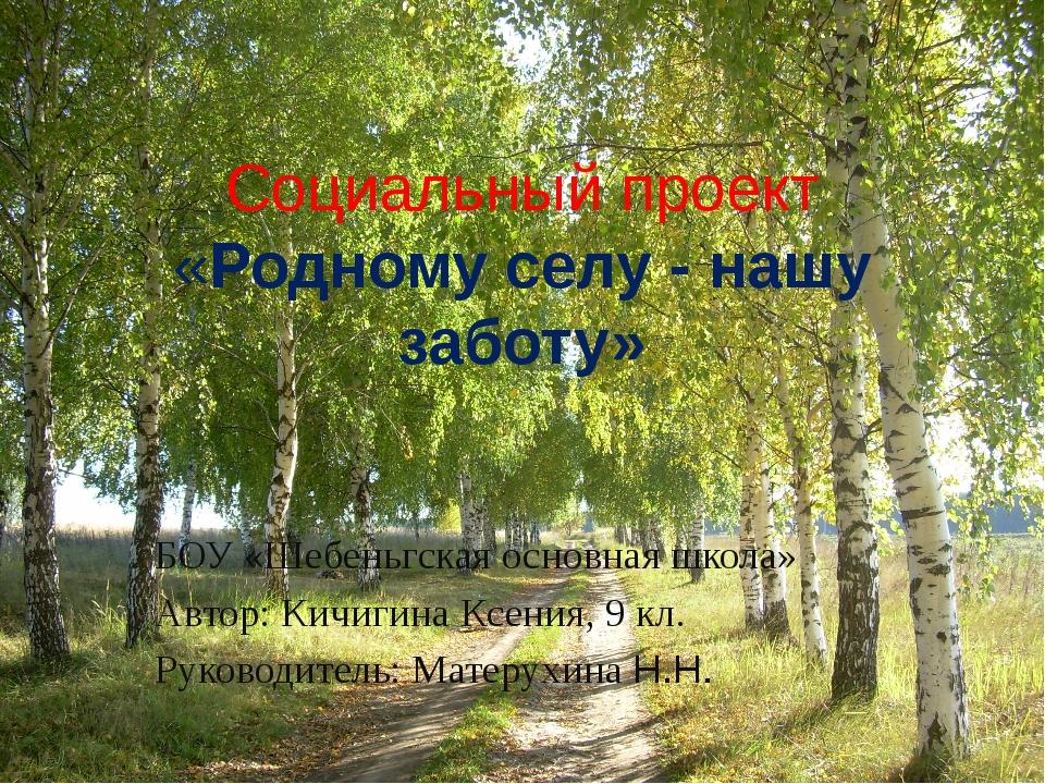 Социальный проект «Родному селу - нашу заботу» БОУ «Шебеньгская основная шко...