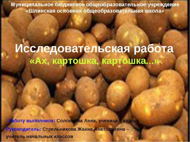 Муниципальное бюджетное общеобразовательное учреждение «Шлинская основная общ...