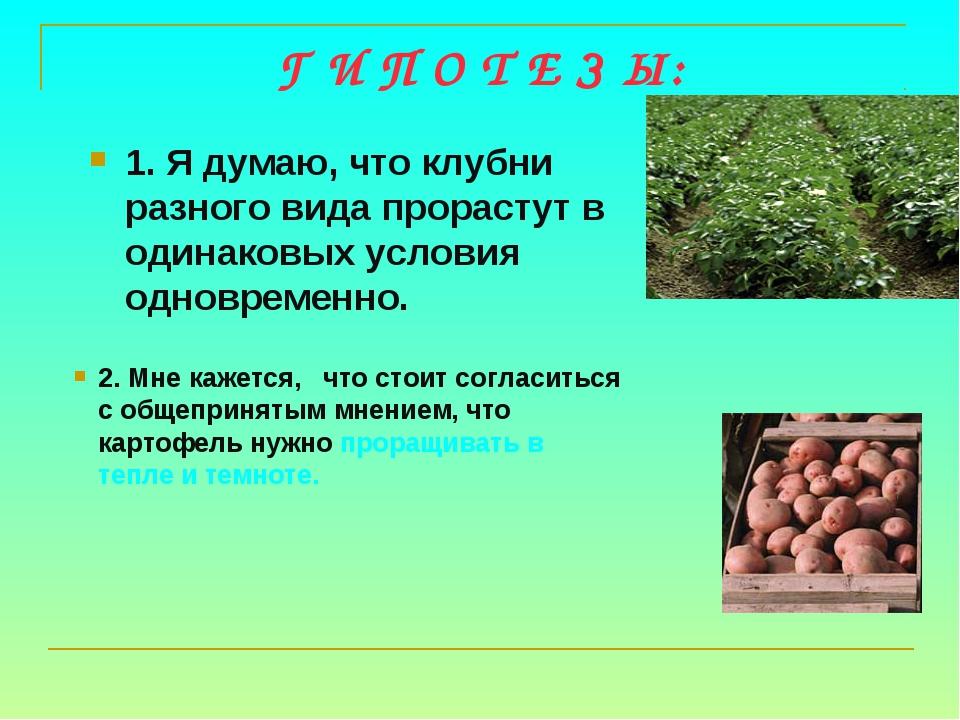 Г И П О Т Е З Ы: 1. Я думаю, что клубни разного вида прорастут в одинаковых у...