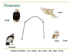 Решение: Кондор Гриф Орел Сова Ответ: Кондор – 3 м., гриф – 2м., орел – 1м.,