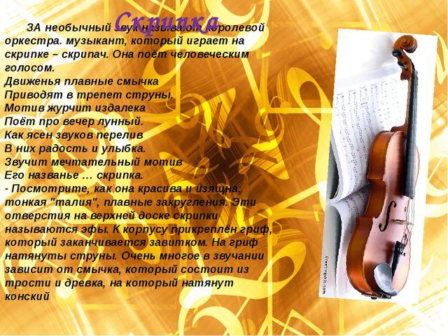 ЗА необычный звук называют королевой оркестра. музыкант, который играет на с...