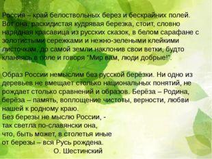 Россия – край белоствольных берез и бескрайних полей. Вот она, раскидистая ку