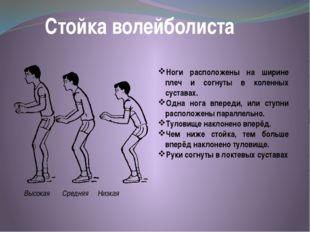 Стойка волейболиста Ноги расположены на ширине плеч и согнуты в коленных суст