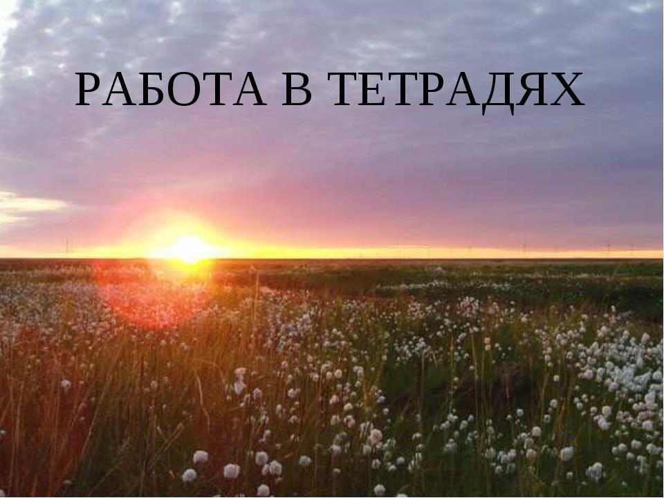 РАБОТА В ТЕТРАДЯХ