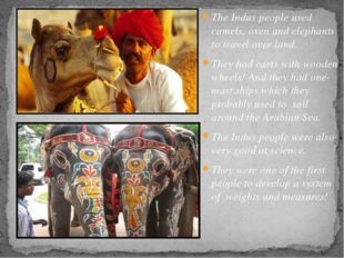 The Indus people used camels, oxen and elephants to travel over land. They ha