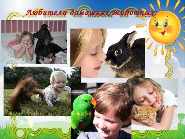 Любители домашних животных: