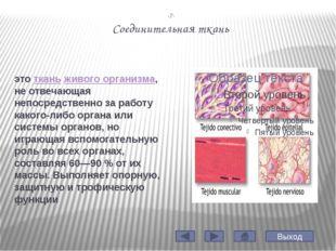 -10- Виды мышечной ткани Гладкая мышечная ткань Поперечно - полосатая скелетн