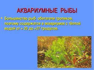 АКВАРИУМНЫЕ РЫБЫ Большинство рыб- обитатели тропиков, поэтому содержатся в ак