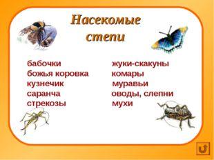 Насекомые степи бабочки жуки-скакуны божья коровка комары кузнечик муравьи са