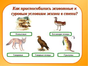 Хищники Грызуны Копытные Как приспособились животные к суровым условиям жизни