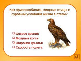Как приспособились хищные птицы к суровым условиям жизни в степи? Острое зре