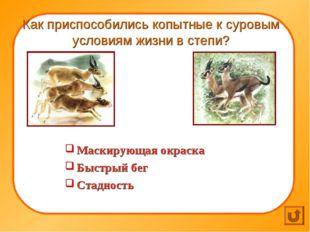 Как приспособились копытные к суровым условиям жизни в степи? Маскирующая ок