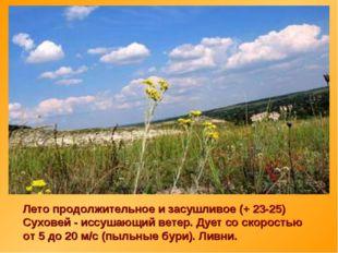 Лето продолжительное и засушливое (+ 23-25) Суховей - иссушающий ветер. Дует