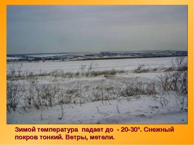 Зимой температура падает до - 20-30°. Снежный покров тонкий. Ветры, метели.