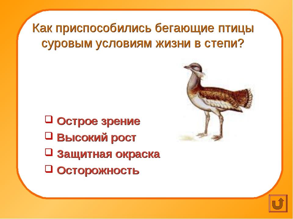 Как приспособились бегающие птицы суровым условиям жизни в степи? Острое зре...