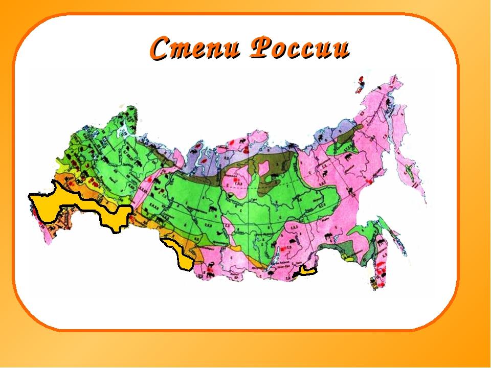 Степи России