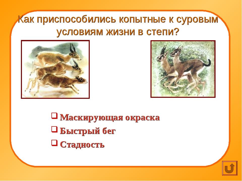 Как приспособились копытные к суровым условиям жизни в степи? Маскирующая ок...