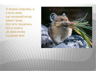Я мышка-норушка, я в поле живу, где ласковый ветер качает траву. Все лето тр