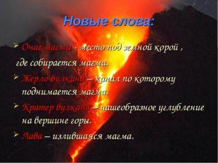 Новые слова: Очаг магмы - место под земной корой , где собирается магма. Жерл