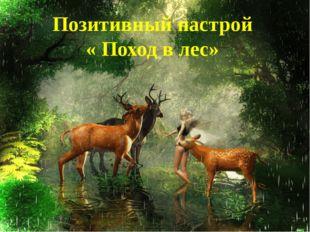 Позитивный настрой « Поход в лес»