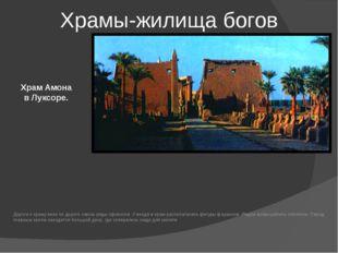 Храм Амона в Луксоре. Храмы-жилища богов Дорога к храму вела по дороге сквозь