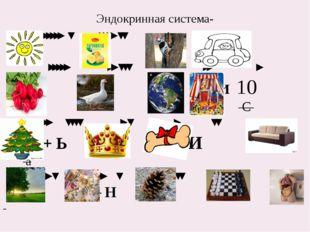 Эндокринная система- ''''' ʽ '''' ʽʽ ' '''' ''''' '' ʽʽʽ '' ' + И 10 С '' ʽʽʽ