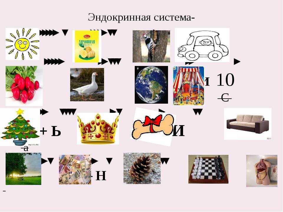 Эндокринная система- ''''' ʽ '''' ʽʽ ' '''' ''''' '' ʽʽʽ '' ' + И 10 С '' ʽʽʽ...