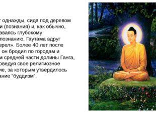 И вот однажды, сидя под деревом Бодхи (познания) и, как обычно, предаваясь г