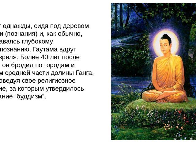 И вот однажды, сидя под деревом Бодхи (познания) и, как обычно, предаваясь г...