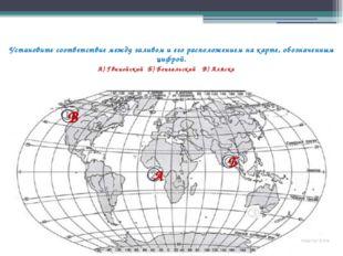 Установите соответствие между заливом и его расположением на карте, обозначен