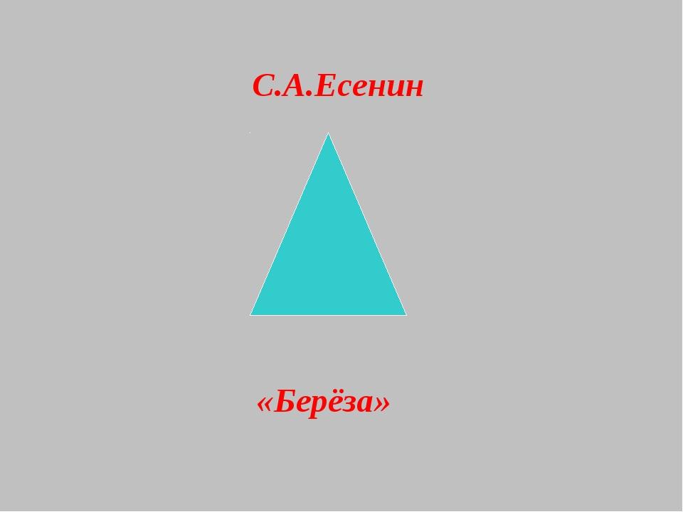 «Берёза» С.А.Есенин