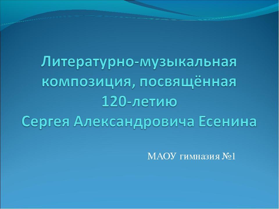 МАОУ гимназия №1