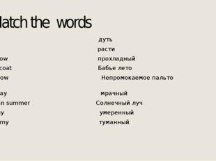 Match the words Cool дуть Mild расти to blow прохладный Raincoat Бабье лето t