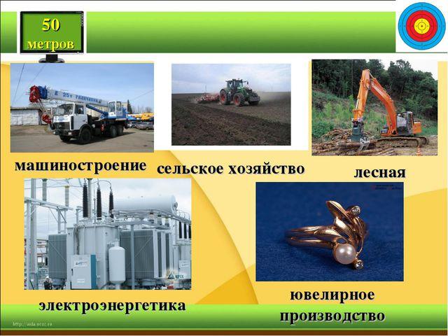 50 метров машиностроение электроэнергетика ювелирное производство лесная сель...