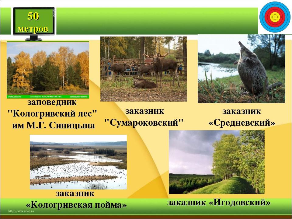 """50 метров заповедник """"Кологривский лес"""" им М.Г. Синицына заказник """"Сумароков..."""